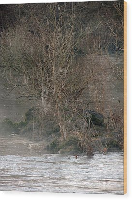 Wood Print featuring the photograph Flint River 19 by Kim Pate