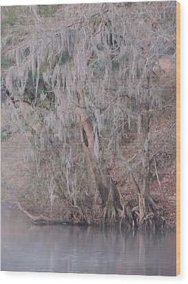 Wood Print featuring the photograph Flint River 2 by Kim Pate