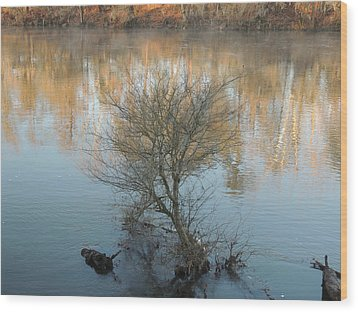 Wood Print featuring the photograph Flint River 24 by Kim Pate