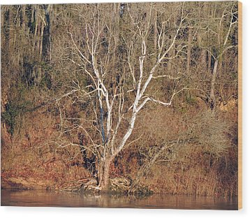 Wood Print featuring the photograph Flint River 25 by Kim Pate