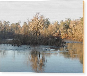 Wood Print featuring the photograph Flint River 27 by Kim Pate