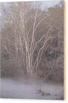 Wood Print featuring the photograph Flint River 9 by Kim Pate