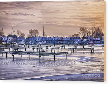 Floating Homes At Bluffers Park Marina Wood Print by Elena Elisseeva