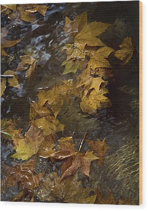 Wood Print featuring the photograph Floating Leaves - Fall In Rome by Michael Flood