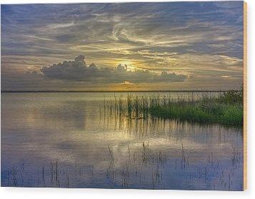 Floating Over The Lake Wood Print by Debra and Dave Vanderlaan