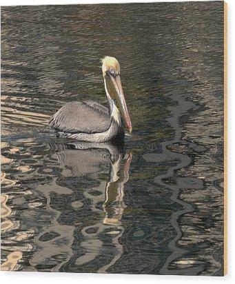 Floating Pelican Wood Print