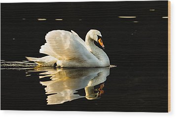 Floats On Peaceful Water Wood Print by Rose-Maries Pictures