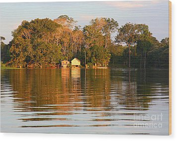 Flooded Amazon With Houses Wood Print by Nareeta Martin