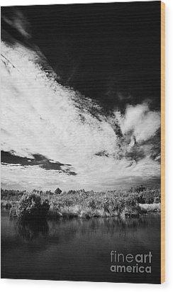Flooded Grasslands And Mangrove Forest In The Florida Everglade Wood Print by Joe Fox