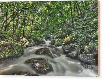 Flooded Small Stream  Wood Print by Dan Friend