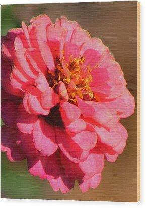 Flora Wood Print by Rhonda Humphreys