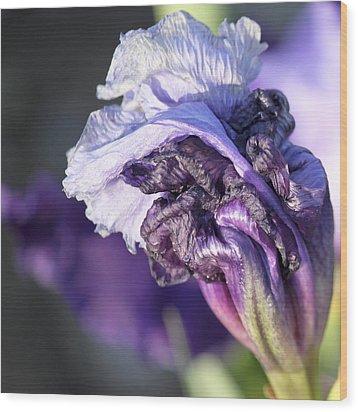 Floral 19 Wood Print