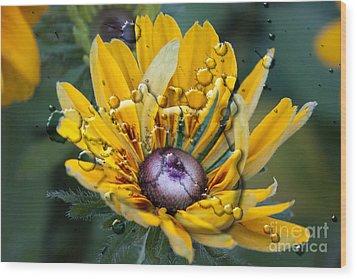 Floral 3 Wood Print