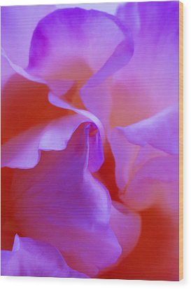 Abstract Red White Orange Pink Flowers Art Work Photography Wood Print