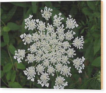 Floral Disc Wood Print by Sonali Gangane