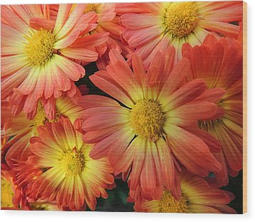 Floral Frenzy 2 Wood Print