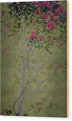 Wood Print featuring the photograph Floral Interlace by Linde Townsend