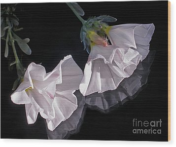 Floral Reflections Wood Print by Kaye Menner