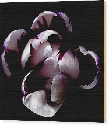 Floral Symmetry Wood Print by Rona Black