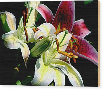 Wood Print featuring the photograph Florals In Contrast by Ira Shander