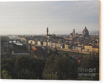 Florence Form The Piazza Michalengelo Wood Print by Belinda Greb