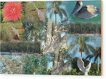 Florida Birds And Trees Wood Print
