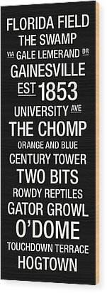 Florida College Town Wall Art Wood Print by Replay Photos