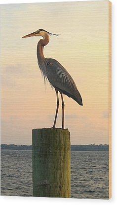 Florida Crane Wood Print