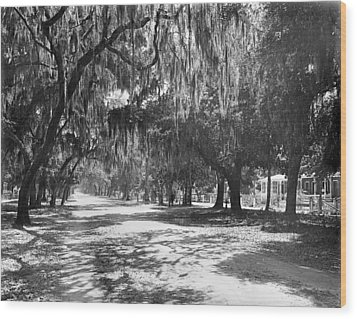 Wood Print featuring the photograph Florida Daytona, C1901 by Granger