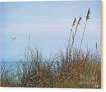 Wood Print featuring the photograph Florida Dunes by Melissa Sherbon