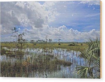 Florida Everglades 0173 Wood Print by Rudy Umans