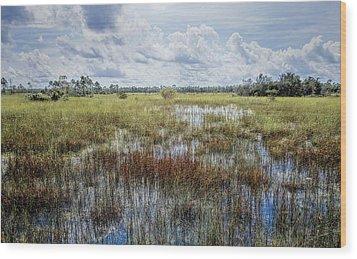 florida Everglades 0177 Wood Print by Rudy Umans