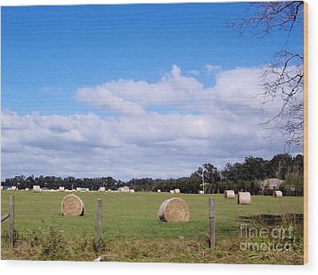 Wood Print featuring the photograph Florida Hay Rolls by D Hackett