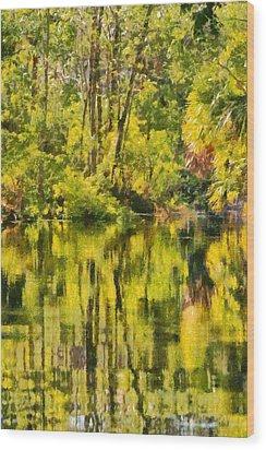 Florida Jungle Wood Print by Christine Till