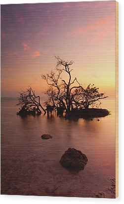 Florida Keys Sunset Wood Print by Mike  Dawson