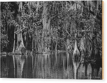 Florida Naturally 2 - Bw Wood Print by Christopher Holmes