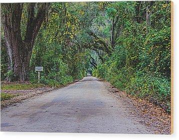 Florida Road Wood Print by Tom Culver