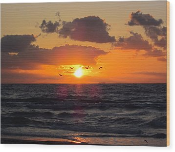 Florida Sunrise Wood Print