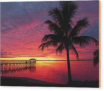 Florida Sunset II Wood Print by Elaine Franklin