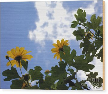 Wood Print featuring the photograph Florida Sunshine1 by Megan Dirsa-DuBois