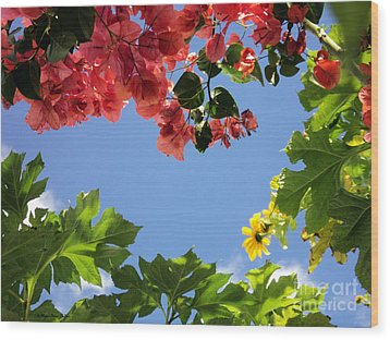 Wood Print featuring the photograph Florida Sunshine2 by Megan Dirsa-DuBois