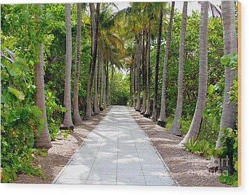 Florida Walkway Wood Print by Carey Chen