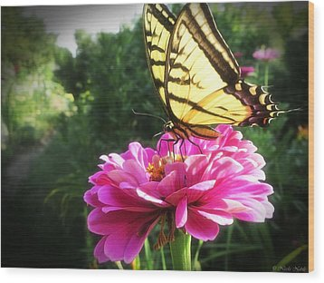Flower And Butterfly Wood Print
