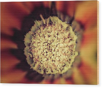Flower Beauty Iv Wood Print by Marco Oliveira