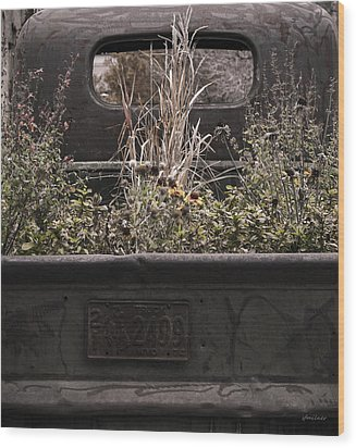 Wood Print featuring the photograph Flower Bed - Nature And Machine by Steven Milner