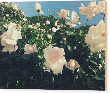 Flower Bush  Wood Print by Kiara Reynolds