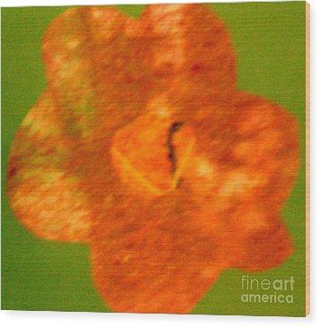 Flower Wood Print by Dorothy Rafferty