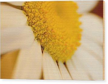 Flower Dream V Wood Print