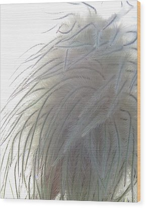 Wood Print featuring the photograph Floral Feathers by Ramona Johnston