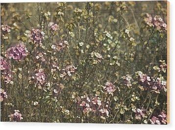 Flower Field Wood Print by Svetlana Sewell